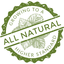 All Natural Herb Plants - Growing to a Higher Standard